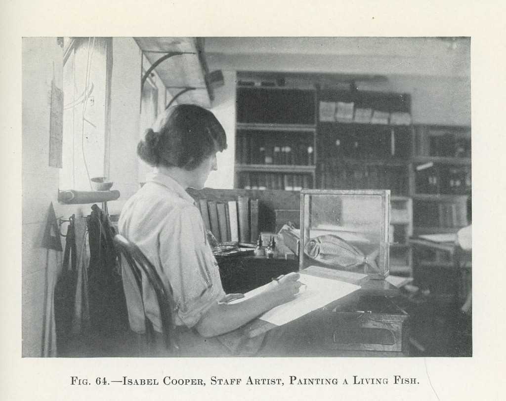 Isabel Cooper at work on ship_Arcturus Adventure